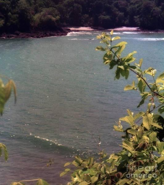 Photograph - Costa Rica Beach Cove by Ted Pollard