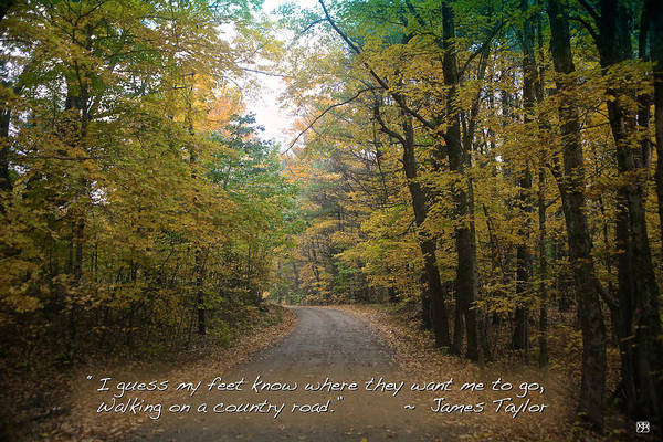 Photograph - Country Road by John Meader