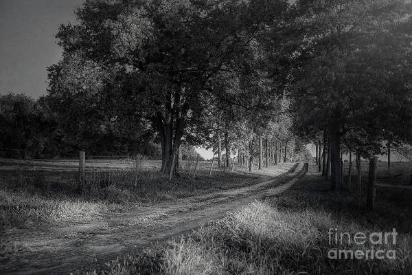 Photograph - Country Road by Tim Wemple