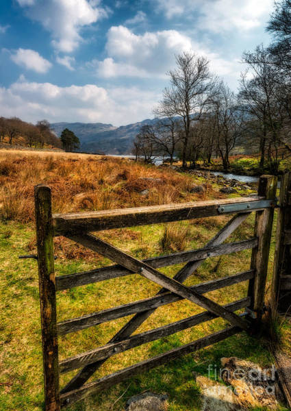 Hinges Photograph - Countryside Gate by Adrian Evans