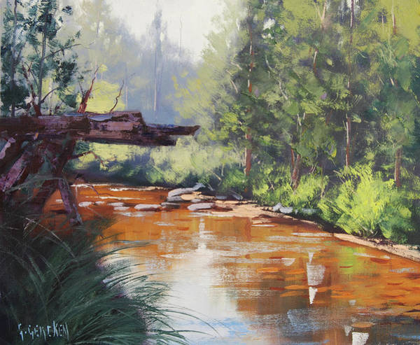 Brook Painting - Coxs River Bank by Graham Gercken