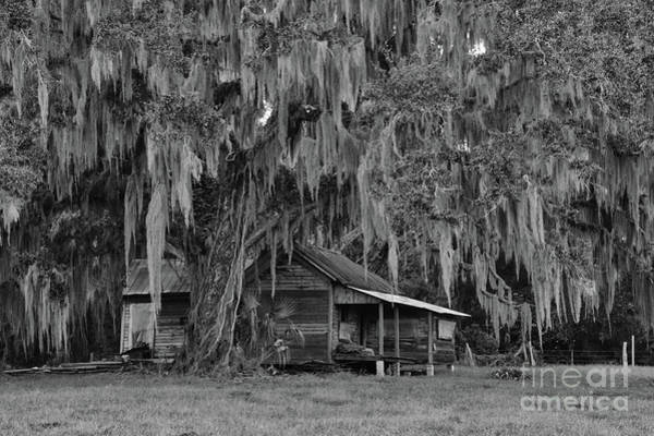 Photograph - Cracker House by Bob Senesac