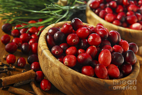 Red Berry Photograph - Cranberries In Bowls by Elena Elisseeva