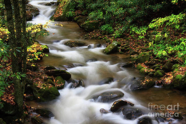 Photograph - Creek Water by Jill Lang