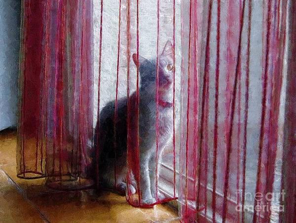 Photograph - Curtain Call by John Kolenberg