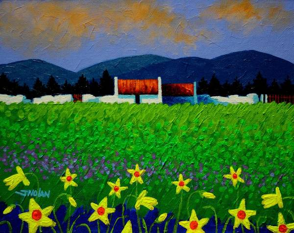 Wall Art - Painting - Daffodil Meadow by John  Nolan