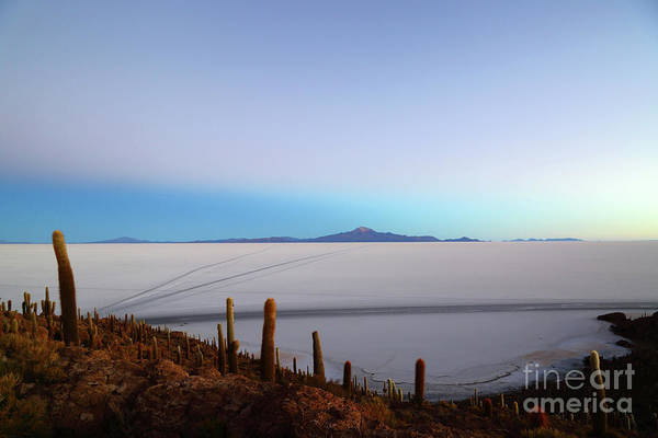 Photograph - Dawn Twilight Over The Salar De Uyuni Bolivia by James Brunker