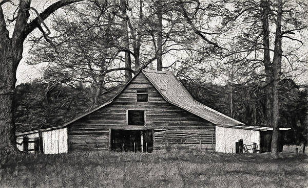 Photograph - Days Gone By 2 by Kim Hojnacki