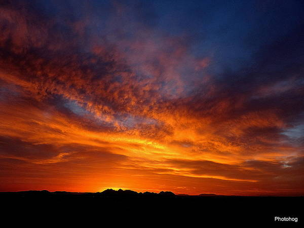 Adam Jones Wall Art - Photograph - Desert Sunset  by Adam Photohog Jones