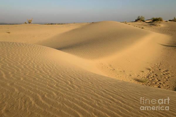Photograph - Desert by Yew Kwang
