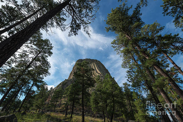 Close Encounters Wall Art - Photograph - Devils Tower From Below   by Michael Ver Sprill