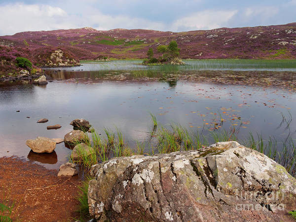 Wall Art - Photograph - Dock Tarn And Watendlath Fell In The Lake District by Louise Heusinkveld