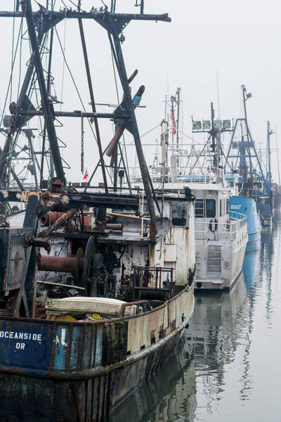 Photograph - Docked Fishing Boats by Robert Potts