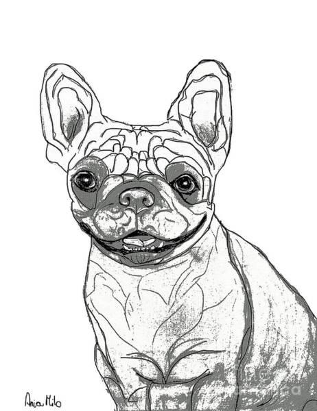 Digital Art - Dog Sketch In Charcoal 7 by Ania M Milo