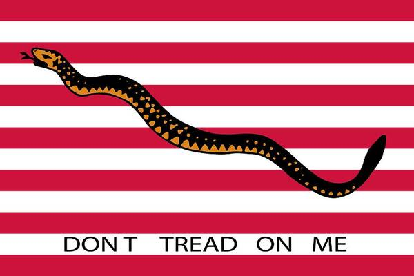 Identity Painting - Don't Tread On Me by American School
