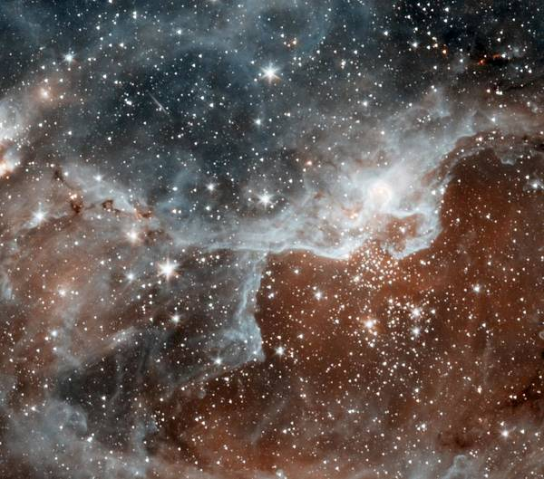 Cygnus Photograph - Dr22 In The Cygnus Region Of The Sky by American School