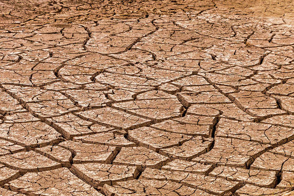 Photograph - Dry River Bed by SR Green