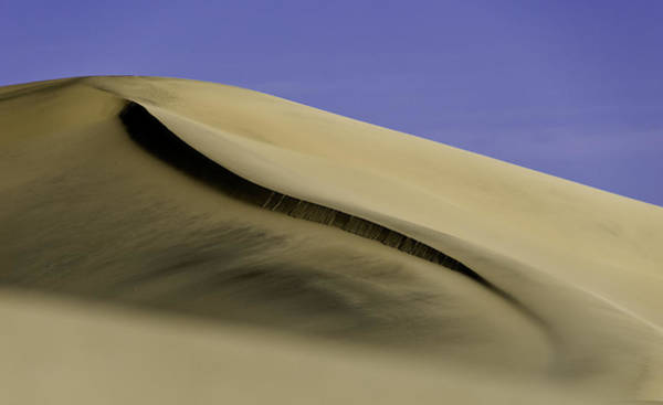 Wall Art - Photograph - Dunes One by Paul Basile