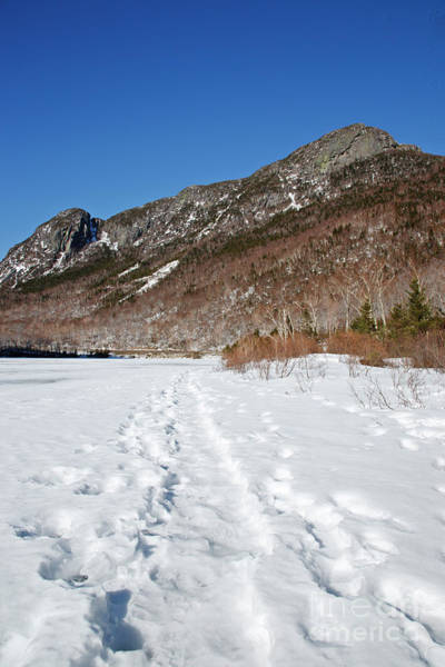 Franconia Notch State Park Photograph - Eagle Cliff  - White Mountains New Hampshire Usa by Erin Paul Donovan