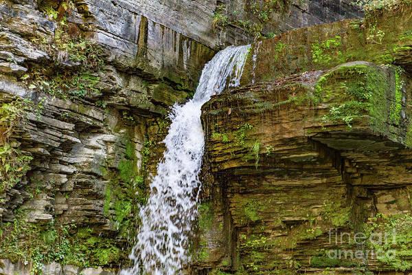 Photograph - Eagle Cliff Falls by William Norton