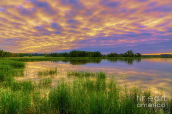 Wall Art - Photograph - Early Morning by Veikko Suikkanen