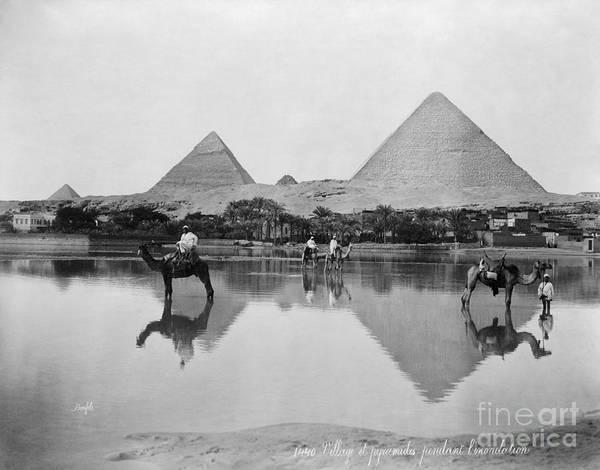 Photograph - Egypt, Pyramid, C1900.  by Granger