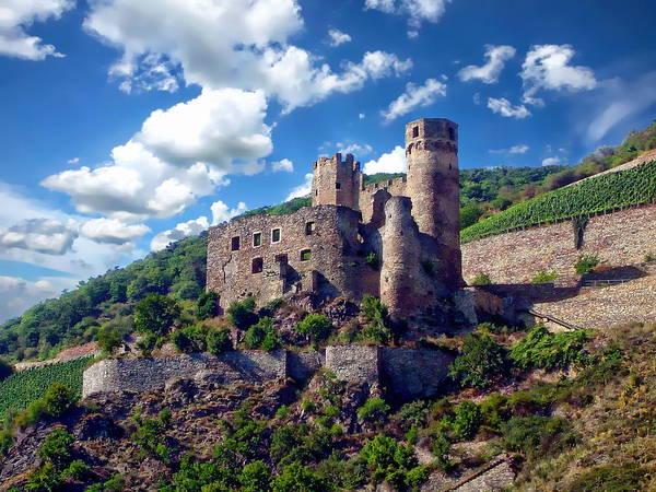 Photograph - Ehrenfels Castle by Anthony Dezenzio
