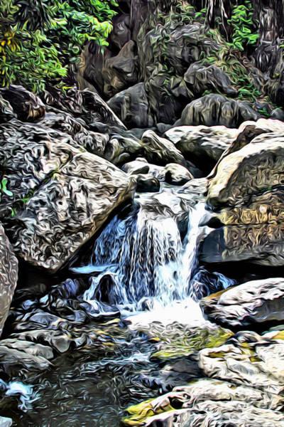 Wall Art - Photograph - El Yunque Stream by Carey Chen