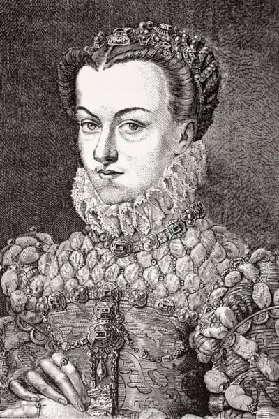 Wall Art - Drawing - Elisabeth Of Austria, Queen Of France by Vintage Design Pics