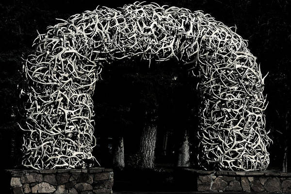 Photograph - Elk Antlers Gate Jackson Hole Wy by Christine Till
