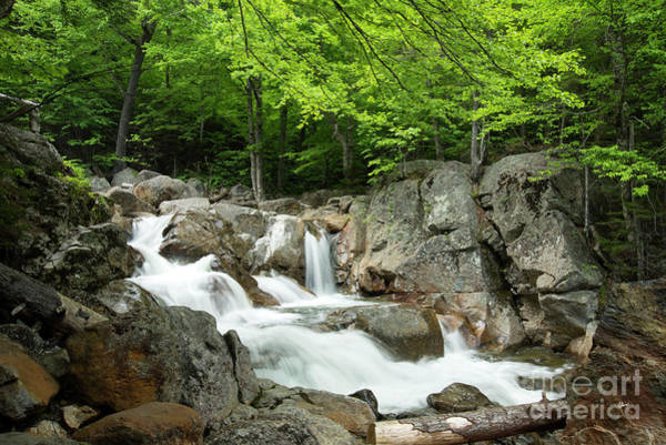 Photograph - Ellis River Waterfall by Alana Ranney