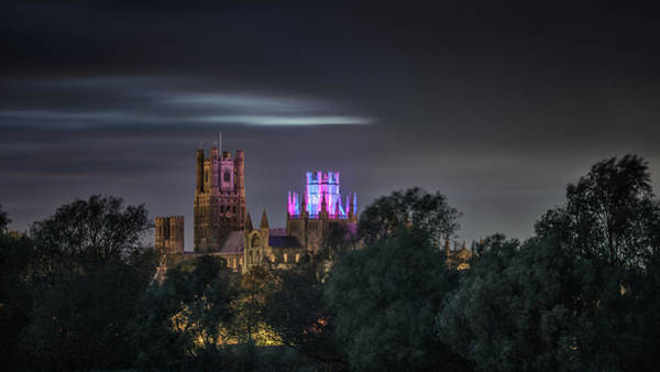 Photograph - Ely Cathedral - Petals by James Billings