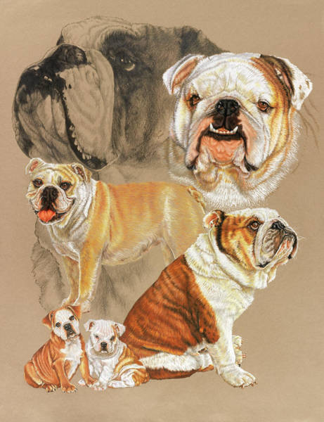 Mixed Media - English Bulldog Revamp by Barbara Keith
