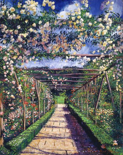 Arbor Wall Art - Painting - English Rose Trellis by David Lloyd Glover