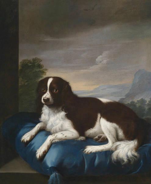 Springer Spaniel Painting - English Springer Spaniel On A Cushion by Sawrey Gilpin