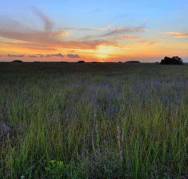 Wall Art - Photograph - Everglades Sunset by Stephen  Vecchiotti