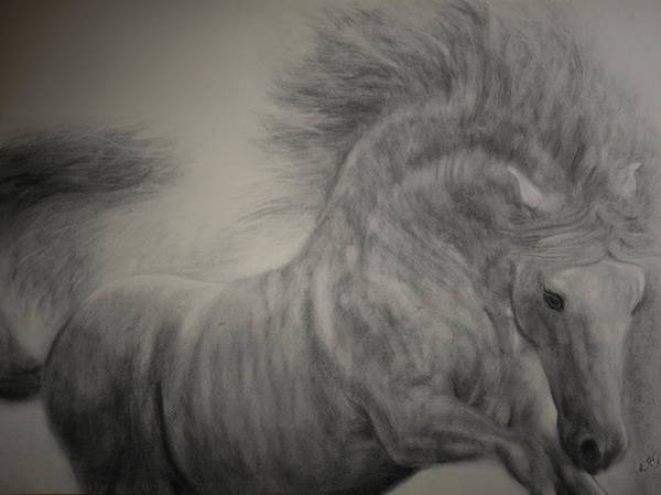 Wa Drawing - Exuberant by Adrienne Martino