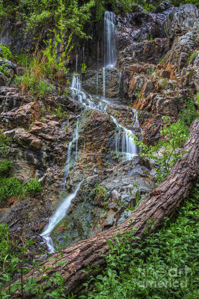 Photograph - Fairy Falls by Spencer Baugh