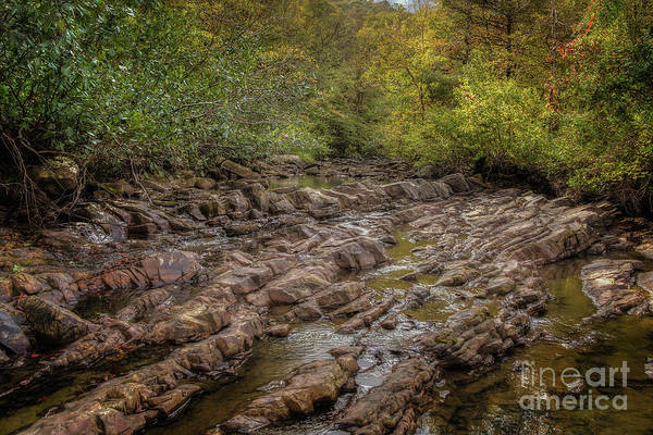 Photograph - Fall At Fane Creek by Larry McMahon