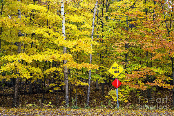 Arbor Photograph - Fall At The End Of The Road In Glen Arbor by Twenty Two North Photography