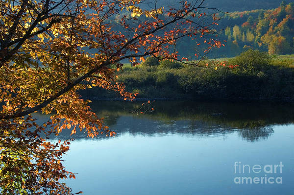 Photograph - Fall In Vermont by Kathleen Gauthier