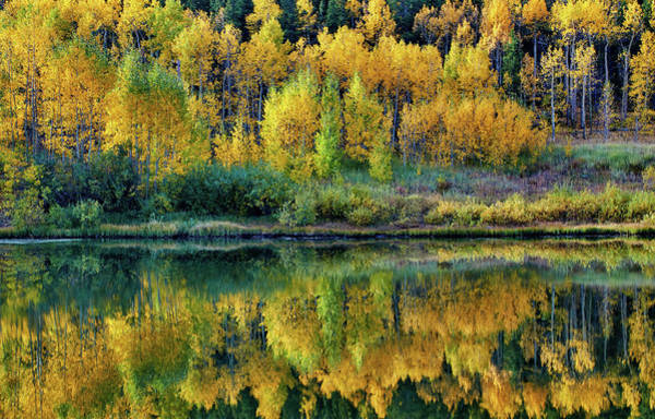 Photograph - Fall Reflections by John De Bord