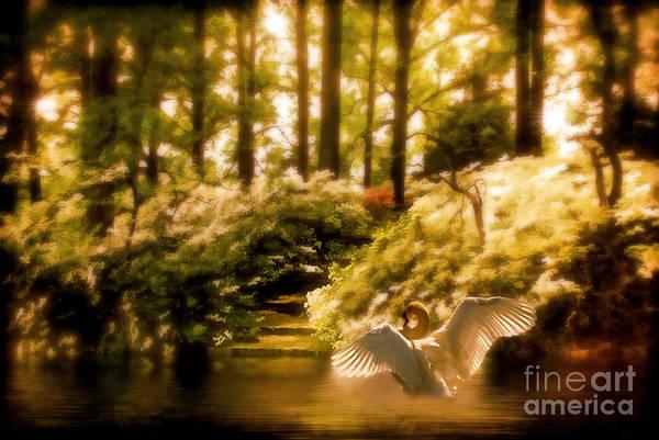 Photograph - Fantasy Land by Lois Bryan