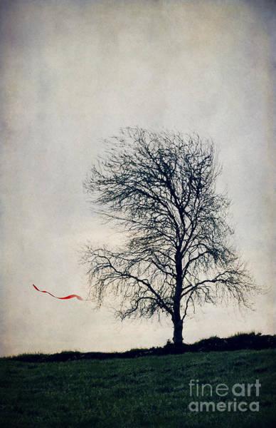 Magical Drawing - Farewell  by Svetlana Sewell