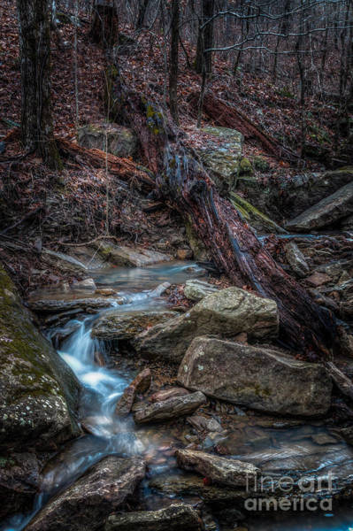 Photograph - Feeder Creek by Larry McMahon