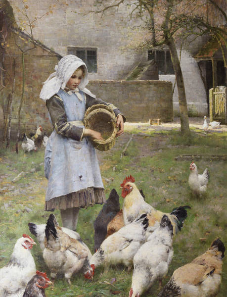 Painting - Feeding The Chickens by Walter Osborne