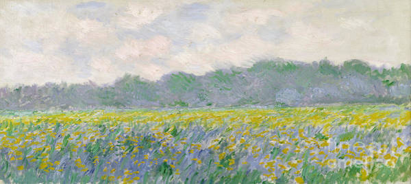 Painting - Field Of Yellow Irises At Giverny by Celestial Images