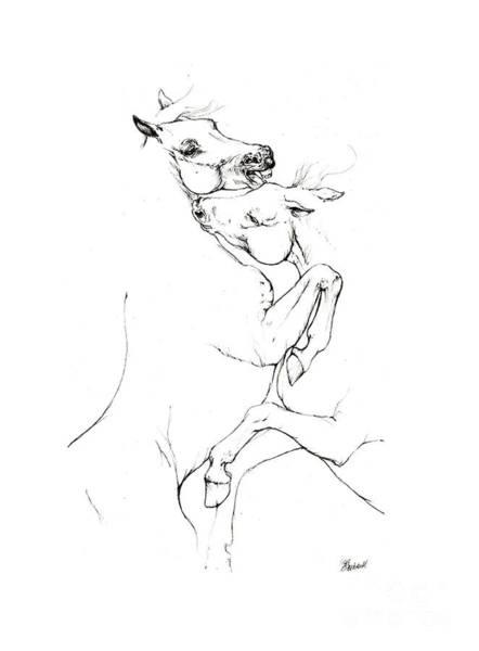 Andalusian Stallion Wall Art - Drawing - Fighting Horses by Angel Ciesniarska