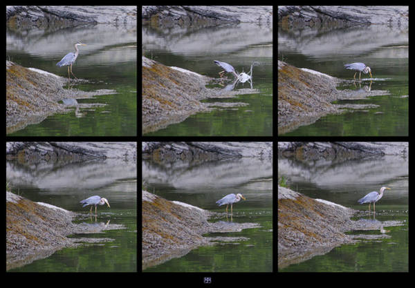 Photograph - Fishing by John Meader
