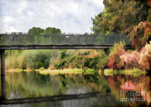 Photograph - Five Mile Bidwell Park by Kathleen Gauthier
